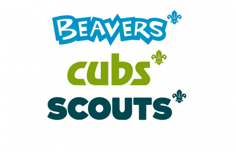 Beavers-Cubs-Scouts 810 x 456_0